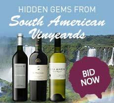 Hidden Gems from South American Vineyards