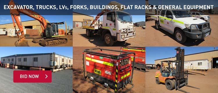 Excavator, Trucks, LVs, Forks, Buildings, Flat Racks & General Equipment