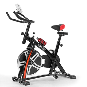 Powertrain Home Gym Flywheel Exercise Sp