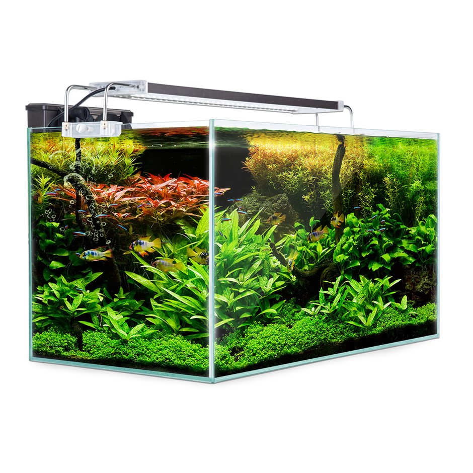 Aquarium Starfire Glass Aquarium Fish Tank 62L