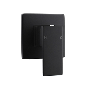 Square Black Wall Built-in Shower/Spout