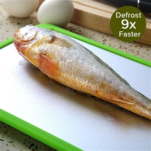 Kitchen Fast Defrosting Tray The Safest