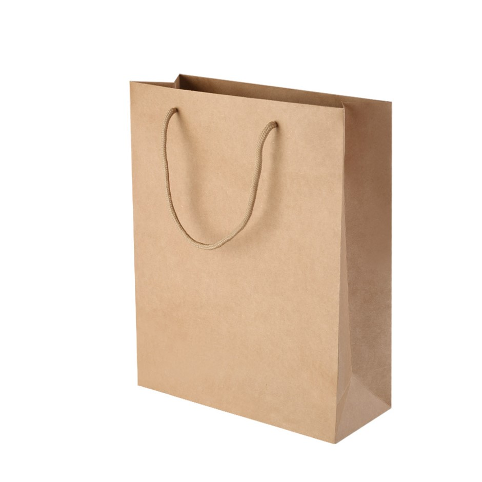 50pcs Kraft Paper Carry Bags Shopping Gift Handbags with Handles Bulk Brown
