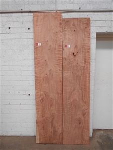 Double Pack - American Redwood (Sequoia)