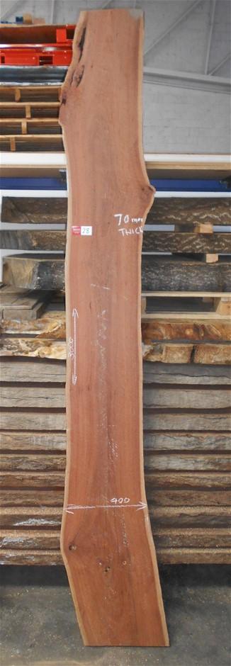 Large Timber Slab - Grey Gum