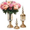 SOGA 2 x Clear Glass Flower Vase with Lid & Pink Flower Filler Vase Gold