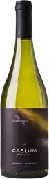 Caelum Reserva Chardonnay 2009 (6 x 750mL), Mendoza, Argentina.