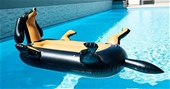 Dachshund Pool Float 6.5ft Inflatable Wiener Dog -WA Pick up
