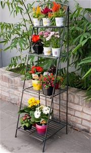 NPX4 Multi-Tiered Display Stand