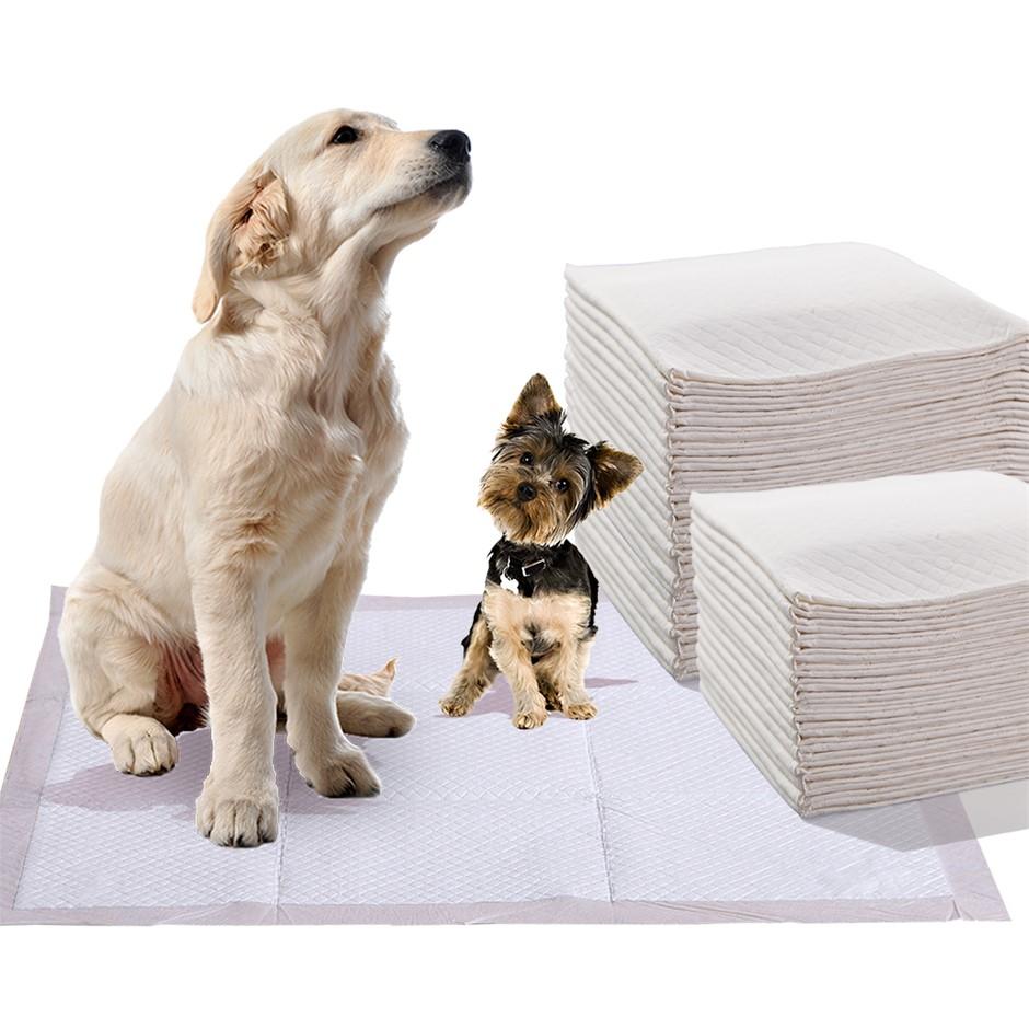 PaWz 400 Pcs 60x60 cm Pet Dog Toilet Training Pads Absorbent Meadow Scent