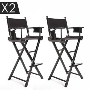 2X 77cm Tall Director Chair - DARK HUMOR