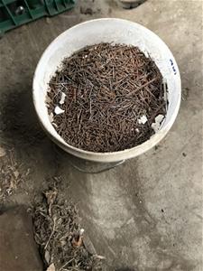 Zinc nails 30mm, approx 1 bucket