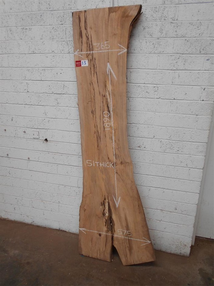 Timber Slab - Spalted Tulip Wood