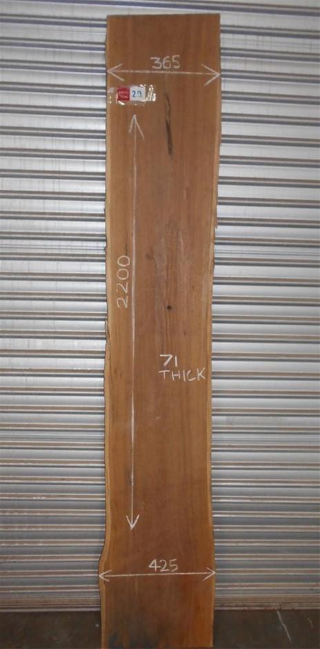 Timber Slab - Spotted Gum
