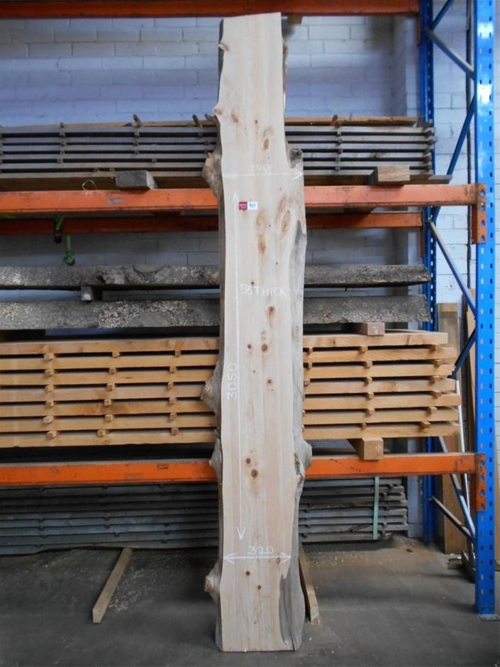 Large Timber Slab - Golden Cypress (Macrocarpa)