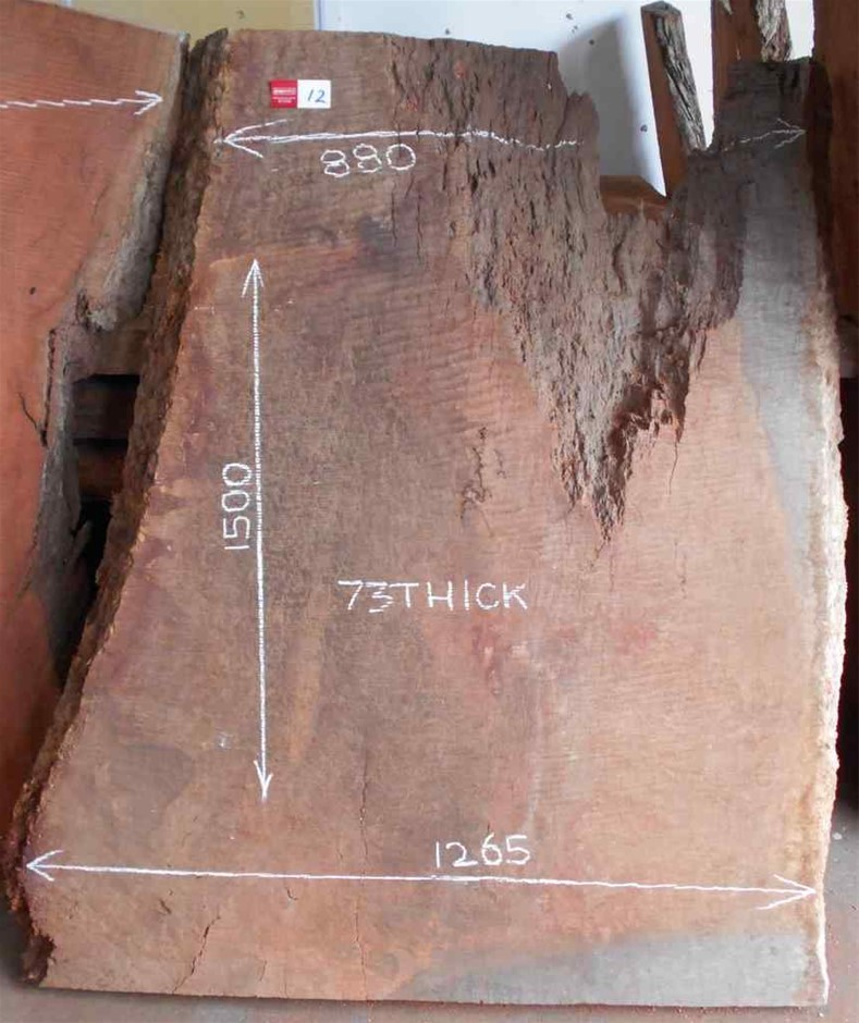 Large Timber Slab - River Red Gum