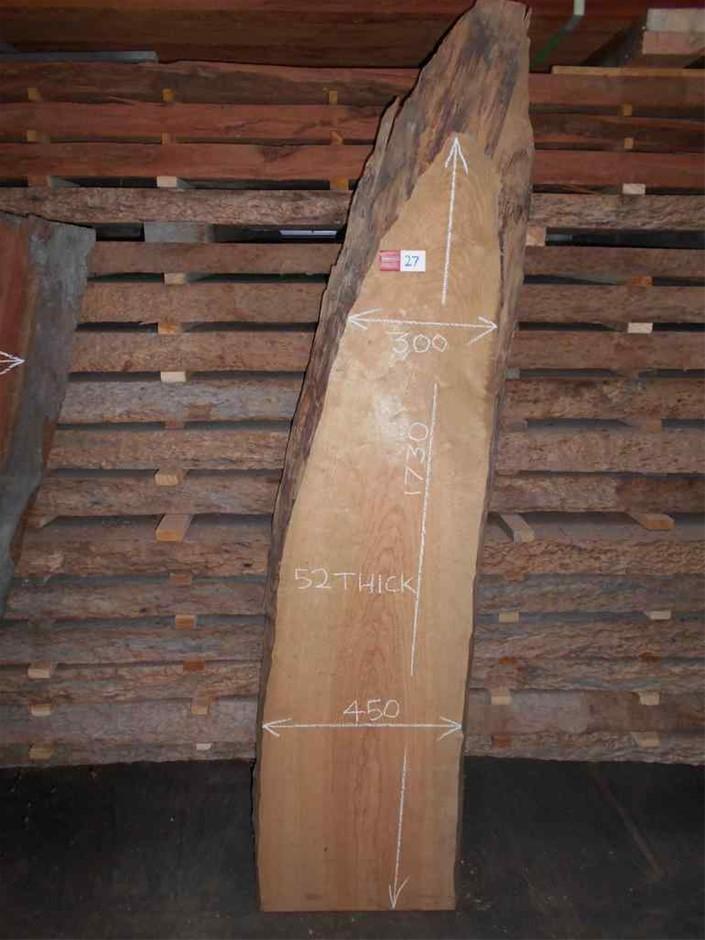 Timber Slab - Monterey Pine