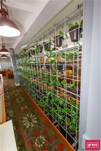 Qty 2 x Metal (Vertical Wall) Pot Plant