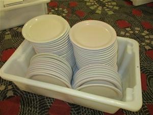 Tub of Carlisle Plates