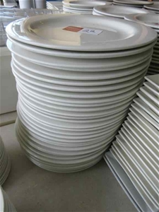Approx. 40 Dinner Plates