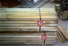 Pack of 190mm x 45mm MGP 10 T2 Termite Treated Pine.