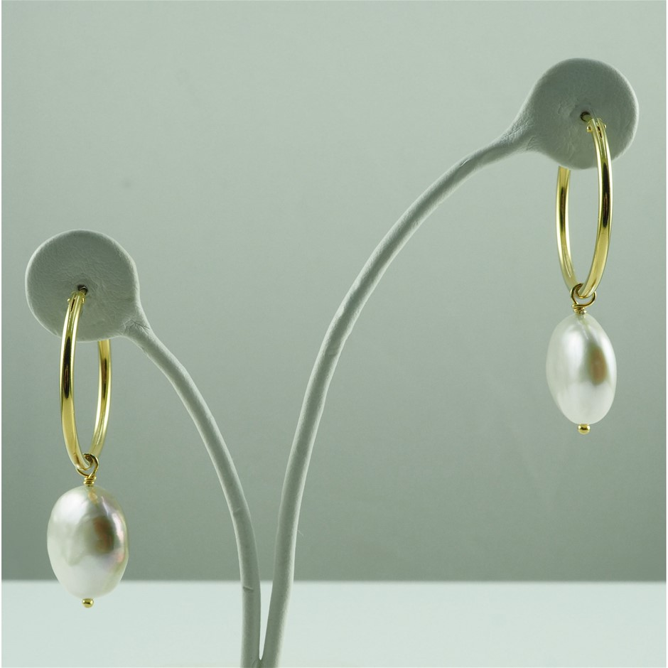 Gold plated Sterling silver earrings set with 12-13mm freshwater coin pearl