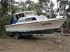 Savage Bluefin Cabin Cruiser