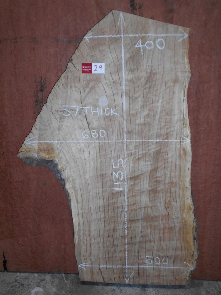 Timber Slab - Mountain Ash