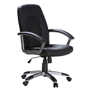 Hummingbird Euro Office Chair